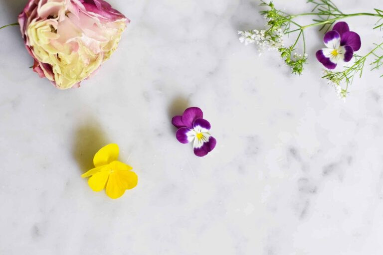 My ultimate guide to edible flowers for drinks and cooking