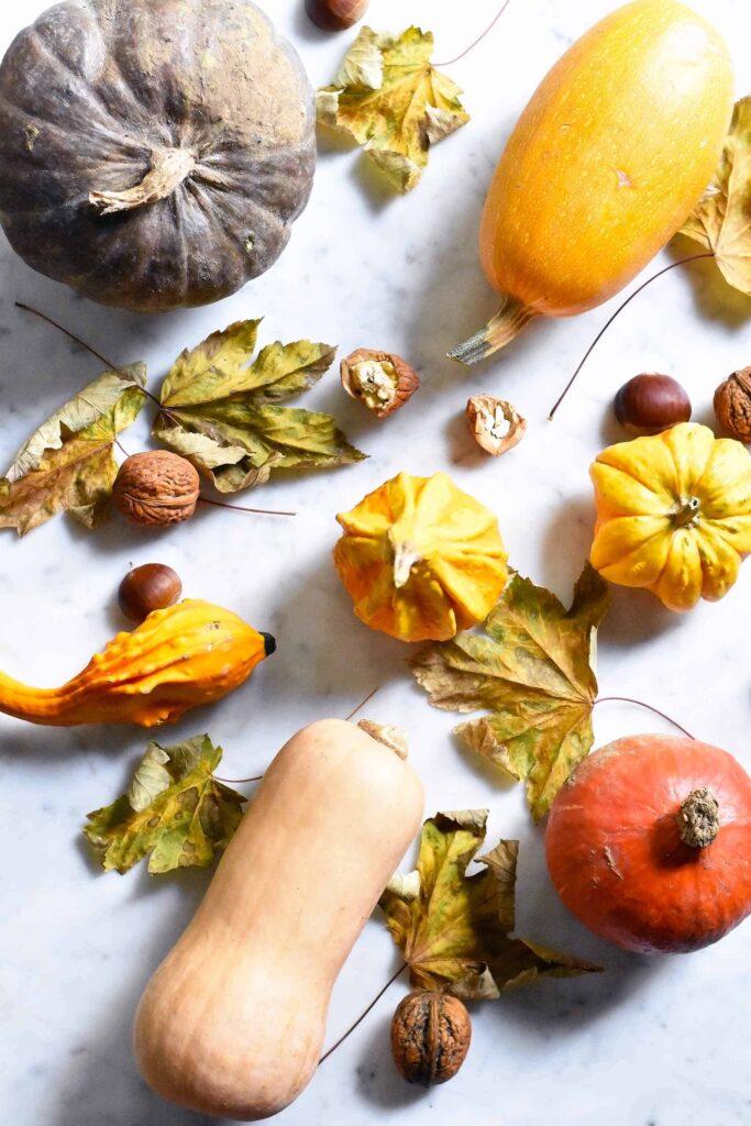 EVERYTHING pumpkin : 6 dishes to enjoy this season
