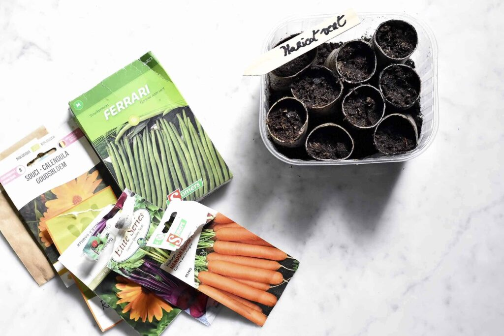 How to grow herbs and vegetables in pots